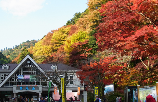 Grab last minute flight deals to Tokyo so you can hike Mount Mitake - IFlyFirstClass