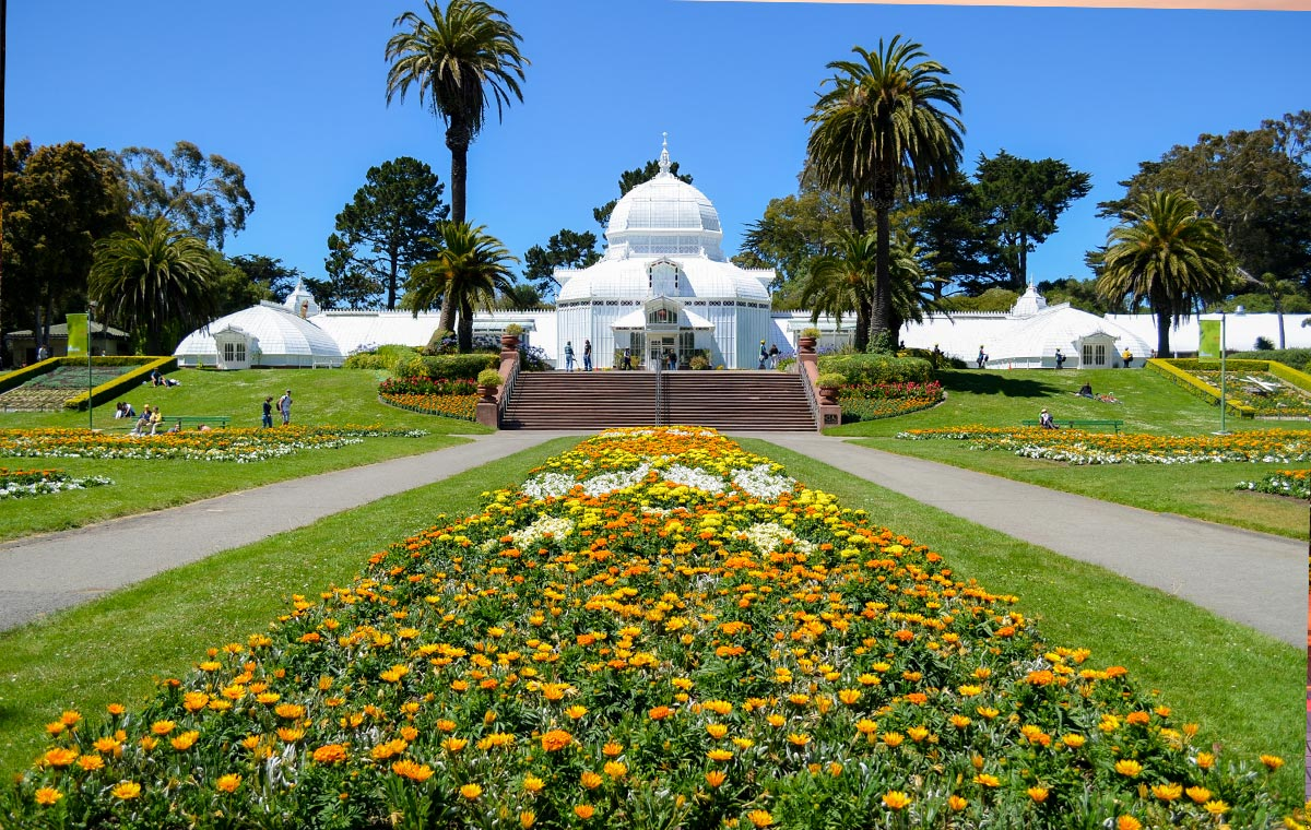 Luxuriate in comfy business class seats to San Francisco attractions like Golden Gate Park. - IFlyFirstClass