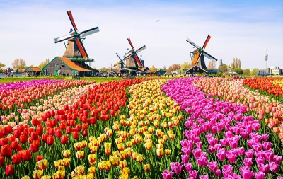 Find business class deals to Amsterdam so you  - IFlyFirstClass